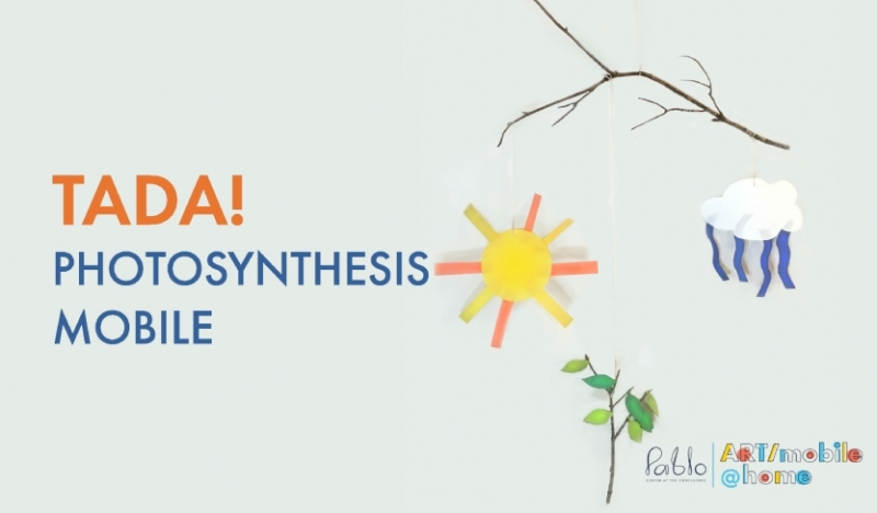 Photosynthesis Mobile Project