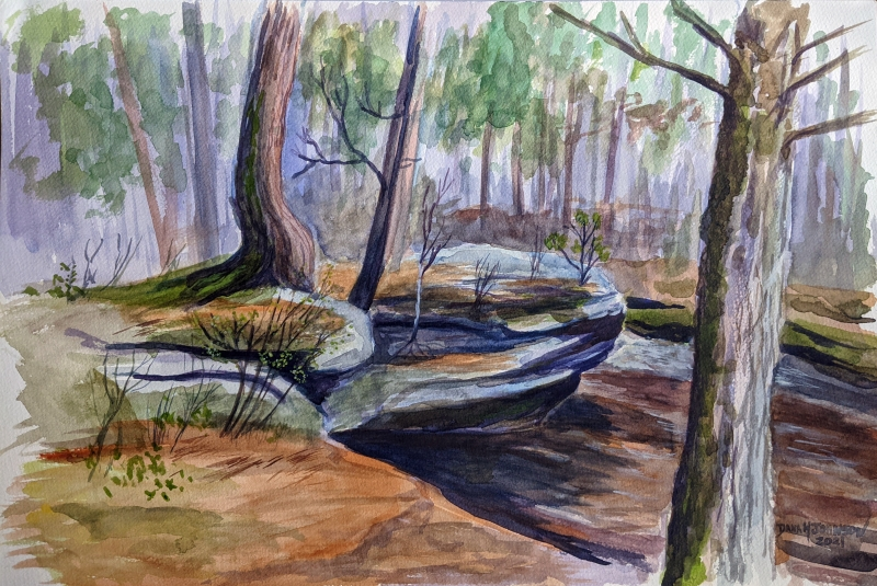 Coon Fork Creek Augusta by Dana M Johnson - 12 x 18 | $225 unframed