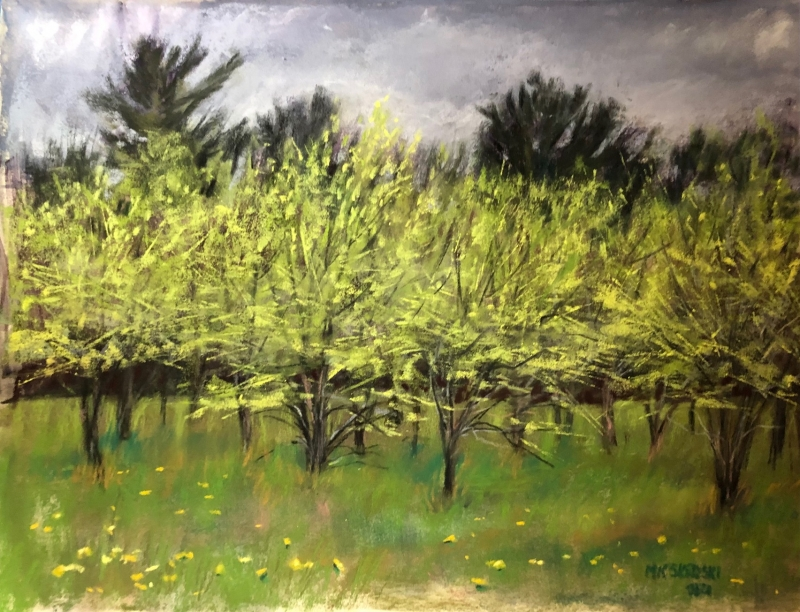 Spring Green Hwy 85 by Maureen K Skroski - 9 x 12 | $350